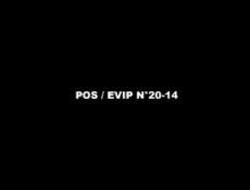 POS / EVIP N°20-14